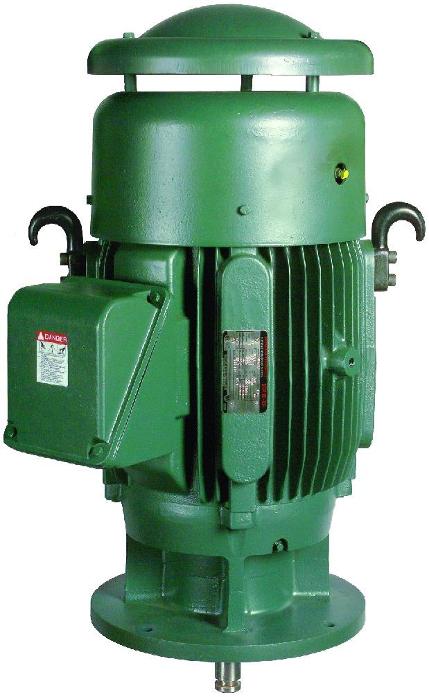 Трехфазные электродвигатели IP55 Toshiba до 259 кВт с полностью закрытым вентилятором Vertical P-Base для шахтного и нефтехимического насосного оборудования вертикальной установки
