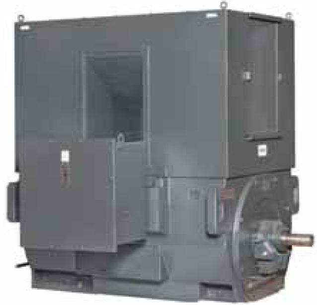 Высоковольтные электродвигатели Toshiba с атмосферостойкой защитой IP24 и обогревом Weather Protected II (WPII)