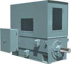 Высоковольтный электродвигатель TM21-L TMEIC