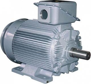 Низковольтный и высоковольтный электродвигатель TM21™-FII TMEIC