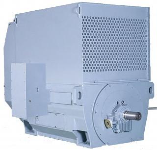 Высоковольтный электродвигатель TM21-MII TMEIC