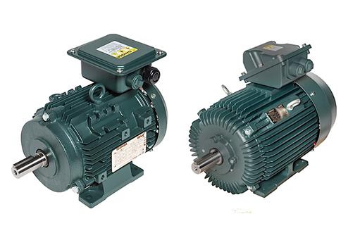 Электромоторы Toshiba с полностью закрытым вентилятором и верхней коробкой клемм TEFC EQP Global® IEC Motors