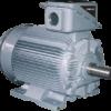 Высоковольтный электродвигатель 21-FII TMEIC (Toshiba+Mitsubishi Electric)