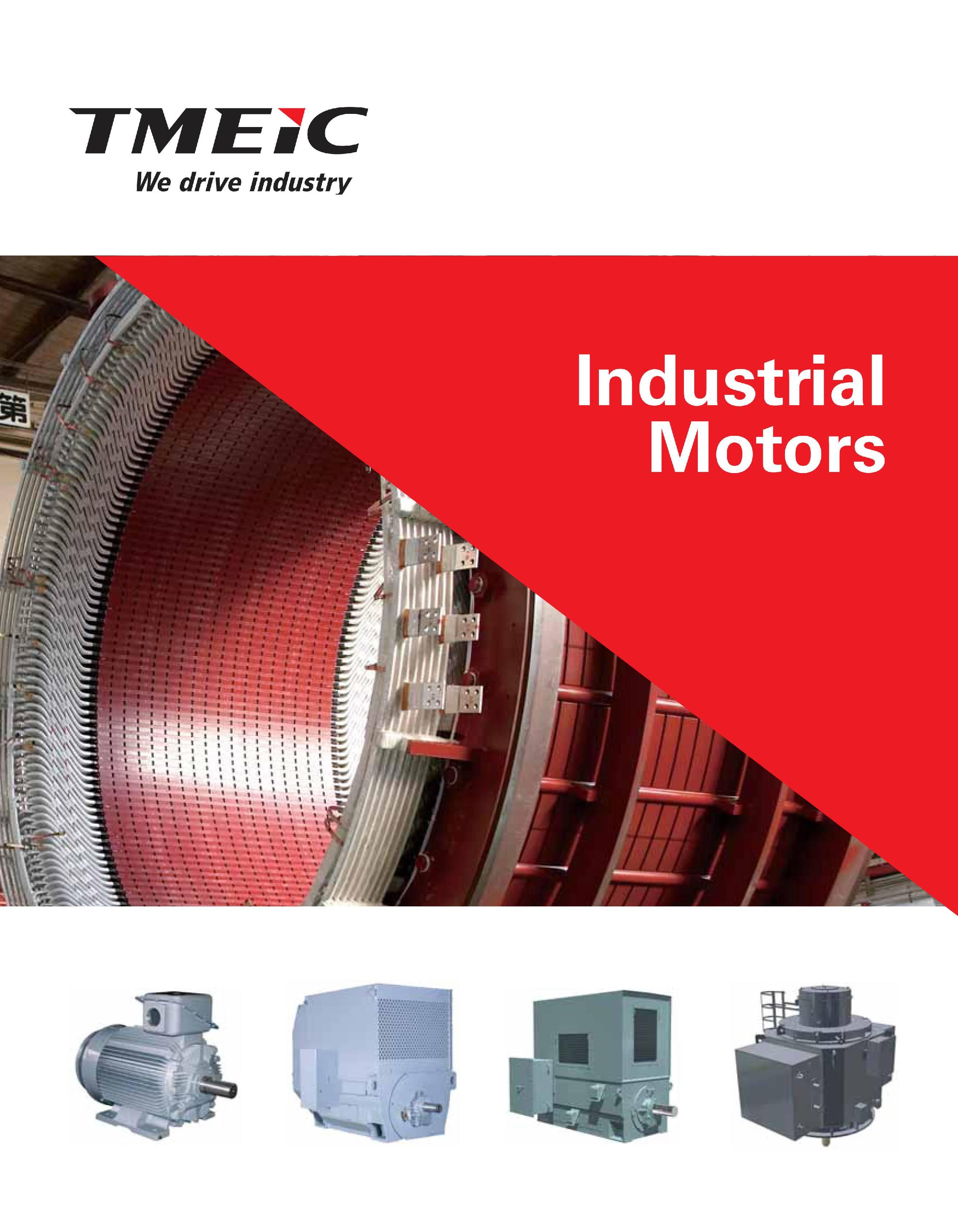Высоковольтные электродвигатели TMEIC (Toshiba+Mitsubishi Electric)