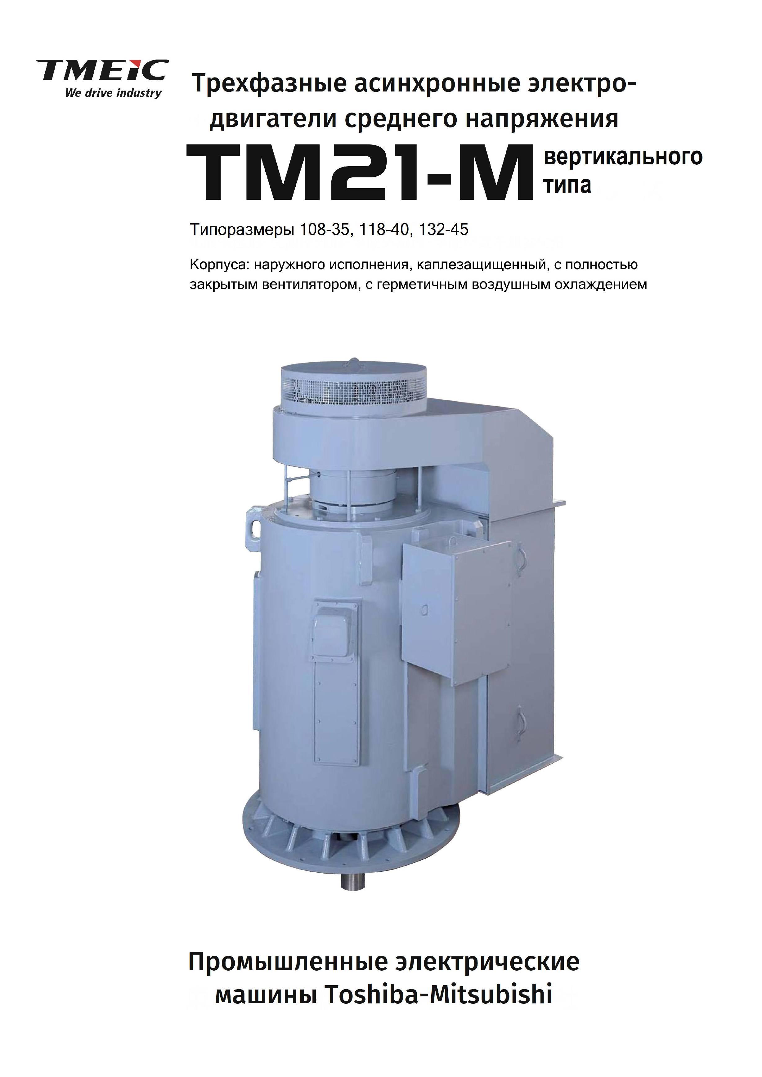Вертикальный электродвигатель среднего напряжения 21-FII TMEIC (Toshiba+Mitsubishi Electric)